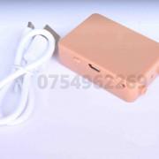 cutiuta gsm box